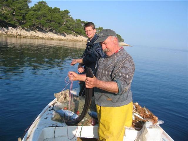 Jagodna hidden bay on hvar island for Fishing in croatia