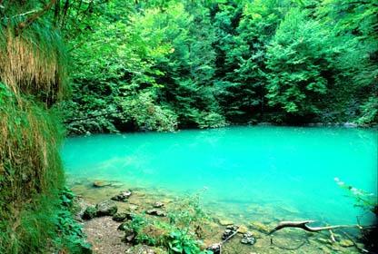 National park Risnjak Croatia (4)