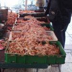 Fish market in Split (3)