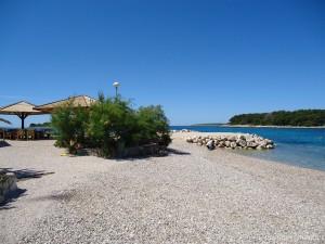Beach Maslinica