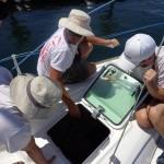 Lowering the keel