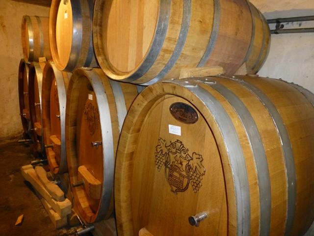 Zinfandel in barrels